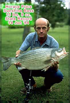 big catch florida state record